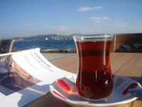 The Bosporus (Full-Day with lunch)